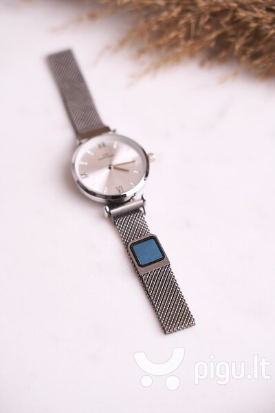 Laikrodis moterims kaina
