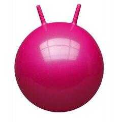 Šokinėjimo kamuolys John 59008, 45-50 cm kaina ir informacija | Vandens, smėlio ir paplūdimio žaislai | pigu.lt