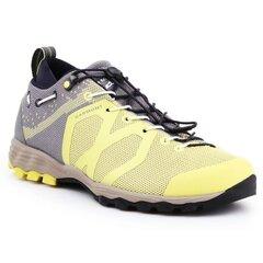 Žygio batai moterims Garmont Agamura Knit WMS W 481036-605, geltoni kaina ir informacija | Aulinukai, ilgaauliai batai moterims | pigu.lt