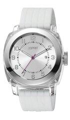 Laikrodis ESPRIT White Cube kaina ir informacija | Vyriški laikrodžiai | pigu.lt