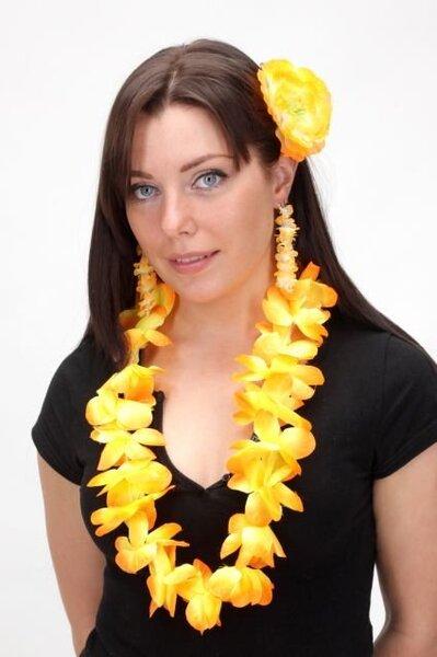 Havajietiškas rinkinys kaina ir informacija | Karnavaliniai kostiumai | pigu.lt