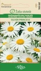 Didžiagraižės baltagalvės Silver Princess kaina ir informacija | Gėlių sėklos | pigu.lt