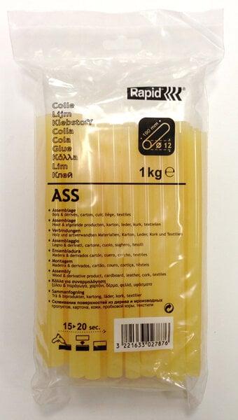 Rapid ASS medienos klijai, 1 kg. kaina ir informacija | Klijai | pigu.lt