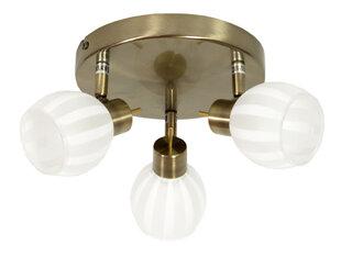 Lubinis šviestuvas Bars Gold III kaina ir informacija | Lubiniai šviestuvai | pigu.lt