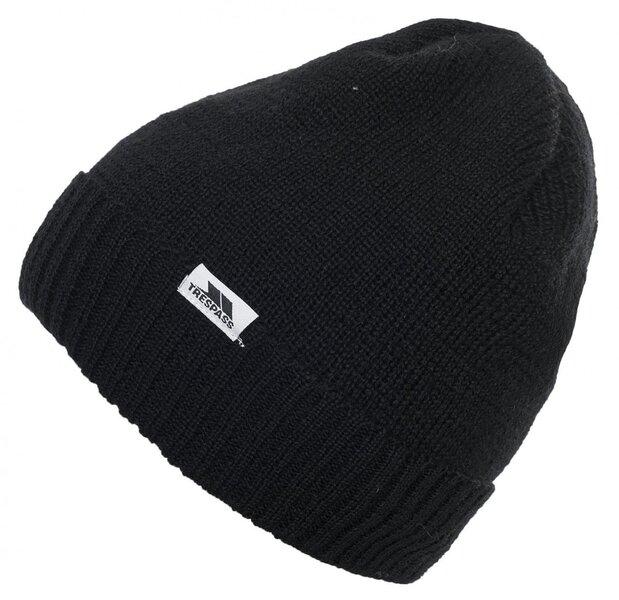 Kepurė Trespass Kenzy kaina ir informacija | Vyriškа slidinėjimo apranga | pigu.lt