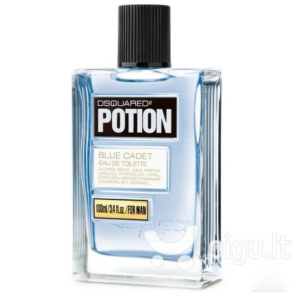 Tualetinis vanduo Dsquared² Potion Blue Cadet EDT vyrams 100 ml kaina ir informacija | Kvepalai vyrams | pigu.lt