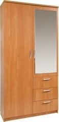 Spinta su veidrodžiu Paris 100/40, ruda kaina ir informacija | Spintos | pigu.lt