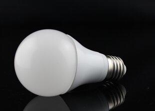 LED Lemputė GLOBE 8W kaina ir informacija | Elektros lemputės | pigu.lt