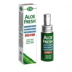 Burnos gaiviklis ESI Aloe Fresh 15 g kaina ir informacija | Dantų šepetėliai, pastos | pigu.lt