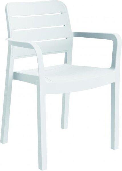 AlliBert kėdė Tisara kaina ir informacija   Lauko baldai   pigu.lt