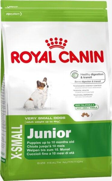 Royal Canin X-Small Junior 0,5 kg kaina ir informacija | Sausas maistas šunims | pigu.lt