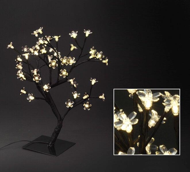 Šviečianti dekoracija Medelis 48 LED kaina ir informacija | Kalėdinės dekoracijos, eglutės žaisliukai | pigu.lt