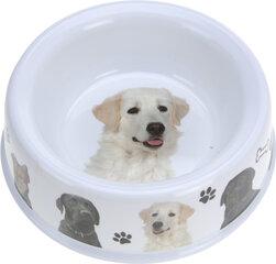 Dubenėlis augintiniui 21,5 cm kaina ir informacija | Dubenėliai šunims, dėžės maistui | pigu.lt