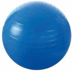 Gimnastikos kamuolys HMS PG kaina ir informacija | Gimnastikos kamuoliai | pigu.lt