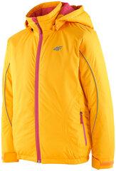 Slidinėjimo striukė mergaitėms 4F kaina ir informacija | Žiemos drabužiai vaikams | pigu.lt