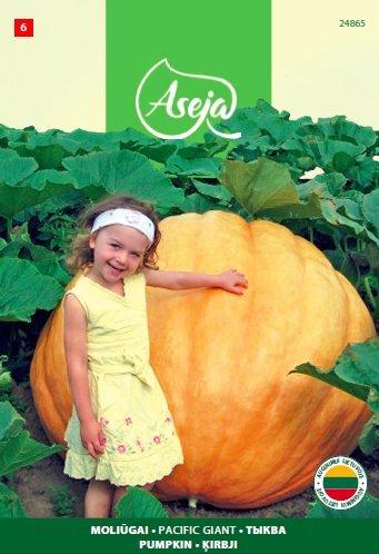 Didieji moliūgai /Pumpkin/ Pacific Giant, ASEJA, 2,5g, 24865( 6 ) kaina ir informacija | Daržovių sėklos | pigu.lt