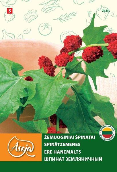 Žemuoginiai špinatai /Chenopodium capitatum/, ASEJA, 0,25g , 28355( 3 ) kaina ir informacija | Daržovių sėklos | pigu.lt