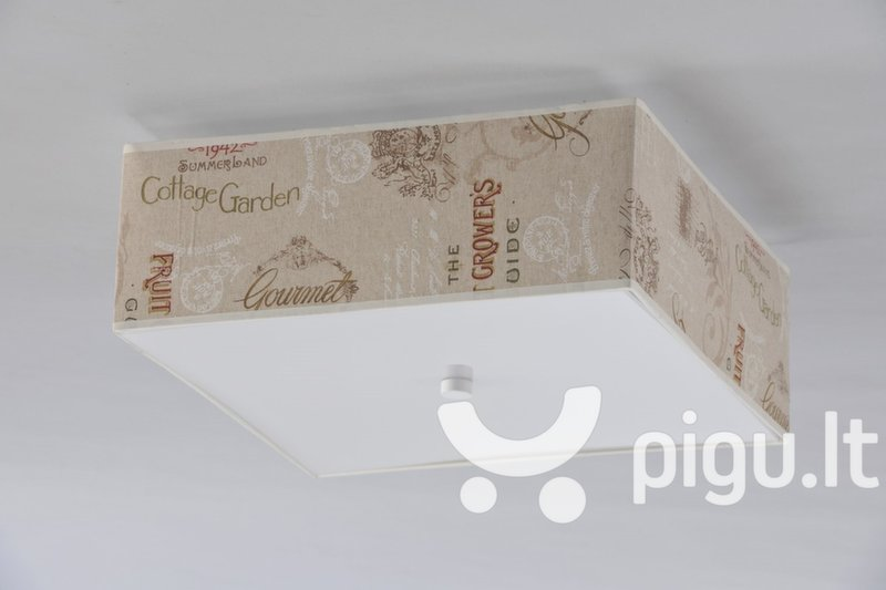 Šviestuvas GARDEN kaina ir informacija | Lubiniai šviestuvai | pigu.lt