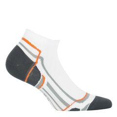 Sportinės kojinės moterims WOLA W841N kaina ir informacija | Pėdkelnės, kojinės | pigu.lt