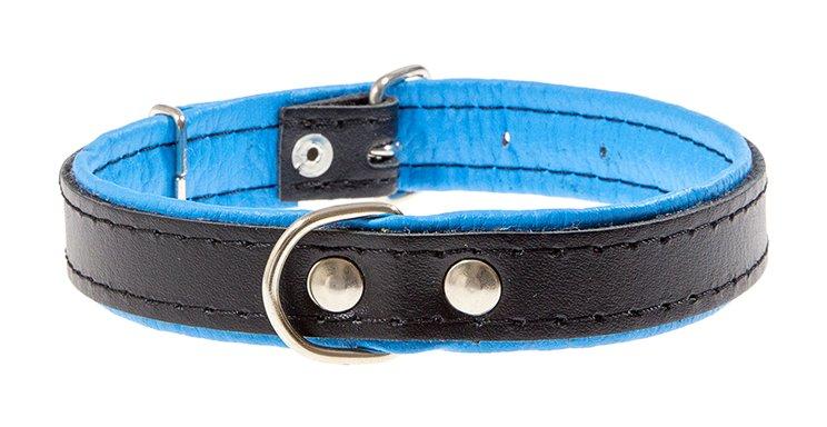 Amibelle antkaklis juodas su mėlynu vidumi, L